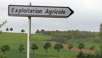 Agriculture paysanne: droits des travailleurs de la terre en théorie et en pratique